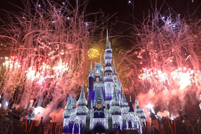 VIP Tour Magic Kingdom