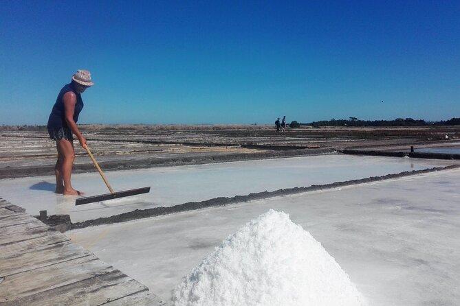 Figueira da Foz by rice paddies and salines