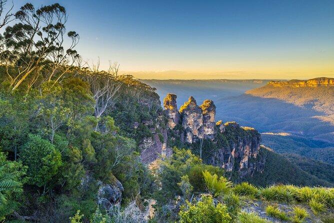 Blue Mountains Private Tour with Kangaroos & Koala Encounter