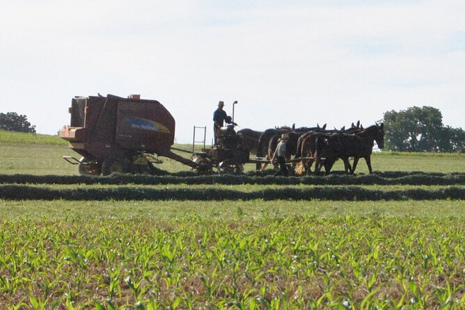 """Contactless"" Guided Amish Farmlands Tour"