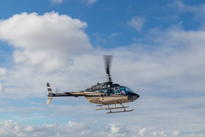 Baltimore Helicopter Tour plus Lunch or Dinner Cruise
