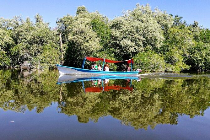 6hr Jungle Lagoon-City Tour-Turtle Release-Crocodrile Farm-Divers Lunch & Drinks