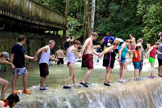 Dunn's River Falls and Luminous Lagoon Tour from Grand Palladium
