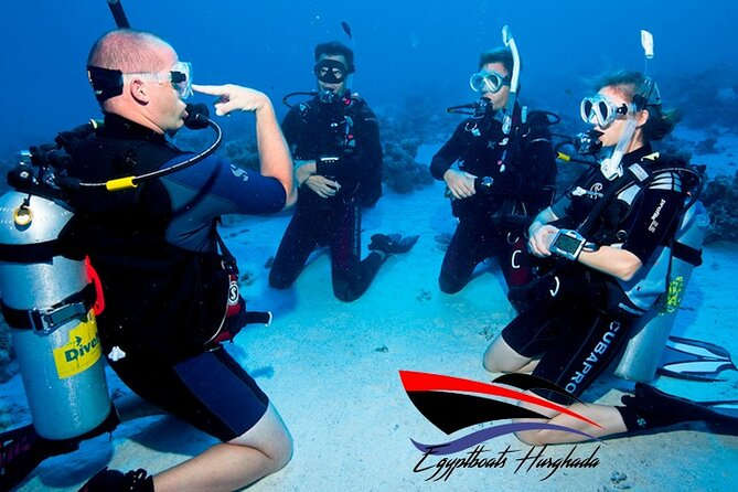 Private 8 hours diving trip - No experience needed - Private instructor- Seafood