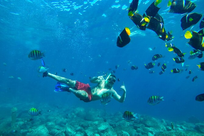 Diving in Marietas Islands