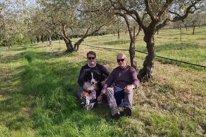 Olivo Istriano - premium olive oil tasting and grove tour experience