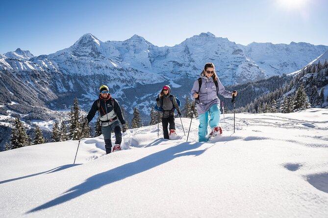 Sneeuwschoenentoer vanuit Interlaken