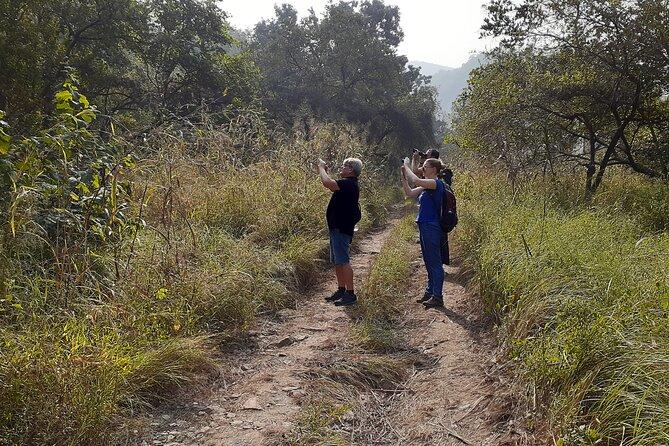 Kumbhalgarh Jungle Walk with Fort Visit