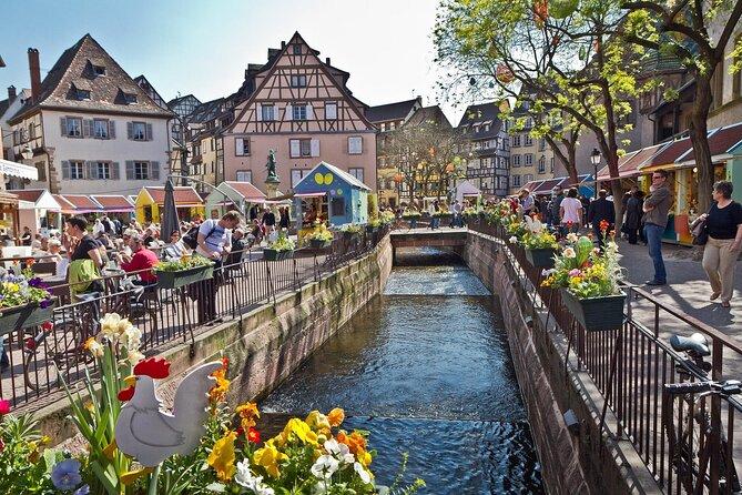 Segway Tours 2h in Colmar