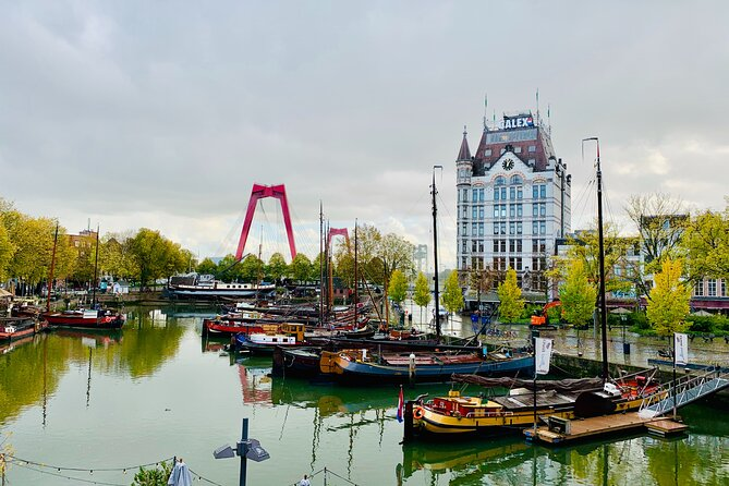 Delft & Rotterdam, the Old vs the New | Small Public Experience from Amsterdam