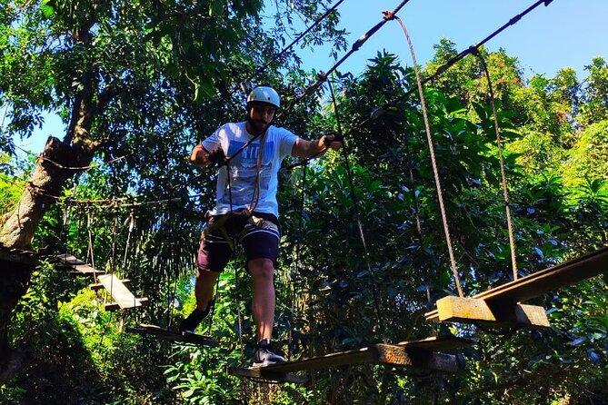 Half-Day Adventurous Tree Climbing Experience in Rio