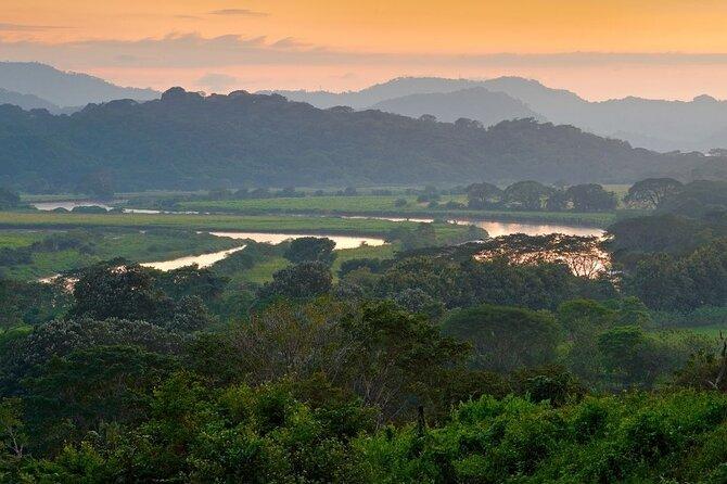 Carara National Park and River Safari by Boat