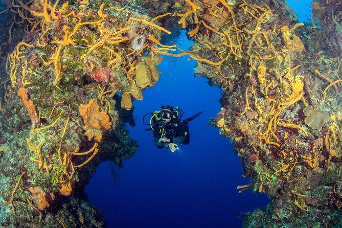 Paquete de inmersión en Cozumel para buceadores certificados desde Riviera Maya