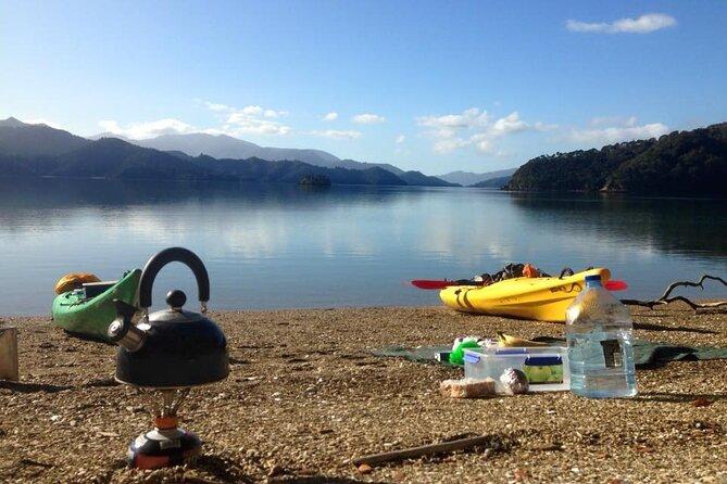 Full-Day Guided Sea Kayaking Trip from Anakiwa