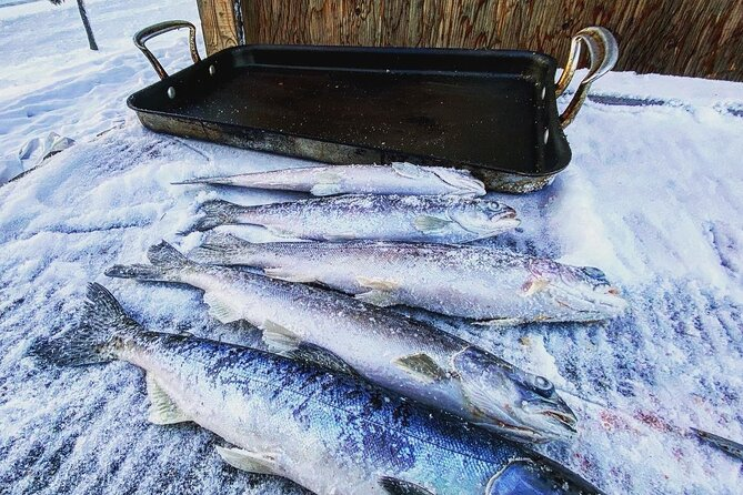 Quick and Easy Ice Fishing at Chena Lake