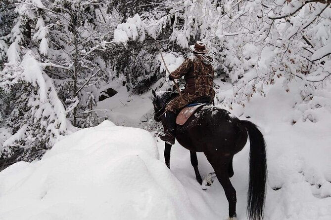1 Hour Waterfalls Canyon Private Horse Riding in Smolyan