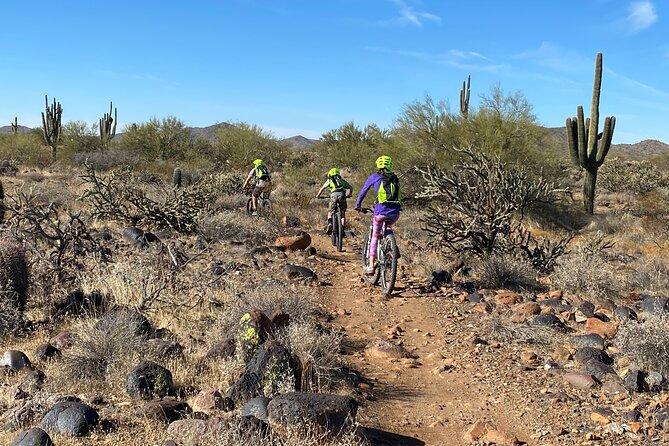 1-2 Hour Desert Guided Mountain Bike Tour