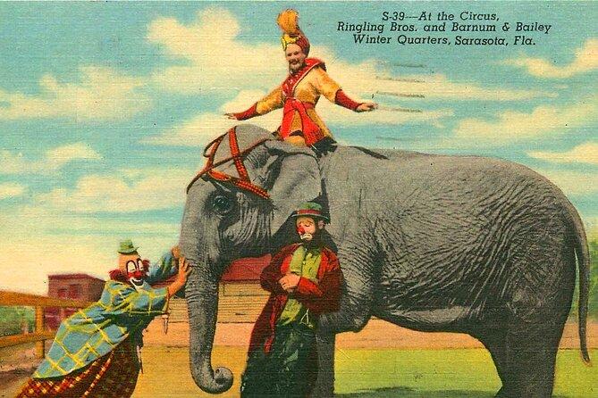 Circus Secrets of Sarasota