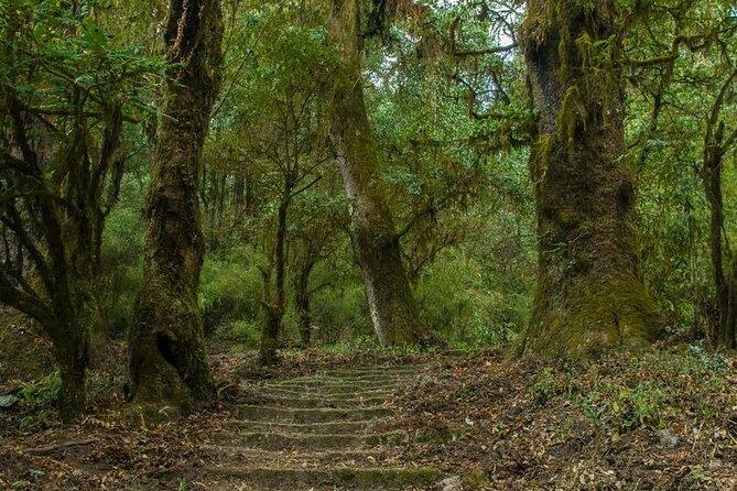 Kathmandu Shivapuri National Park and Nagarkot Hiking - 3 Days
