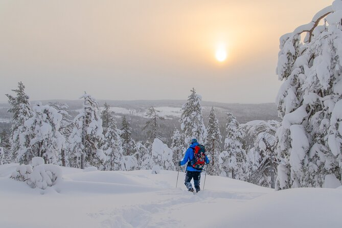 4-Day Small-Group Snowshoe Trek from Rovaniemi