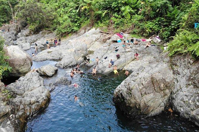Rainforest Off The Beaten Path with Transportation from San Juan