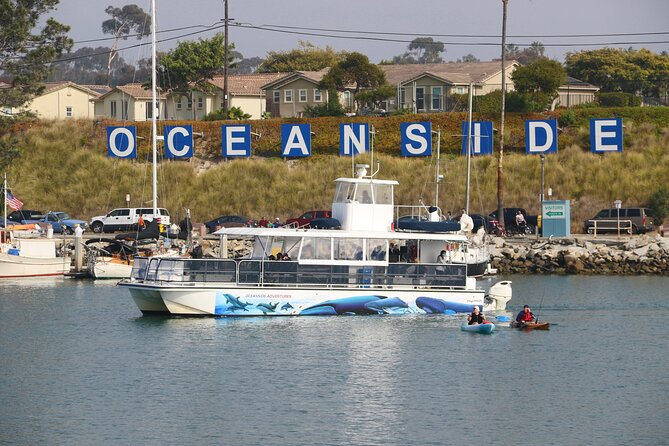 Two-Hour Whale Watching Tours vanuit Oceanside