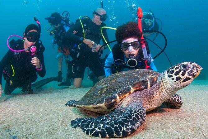 Scuba Diving Arcos or Marietas Vallarta Undersea