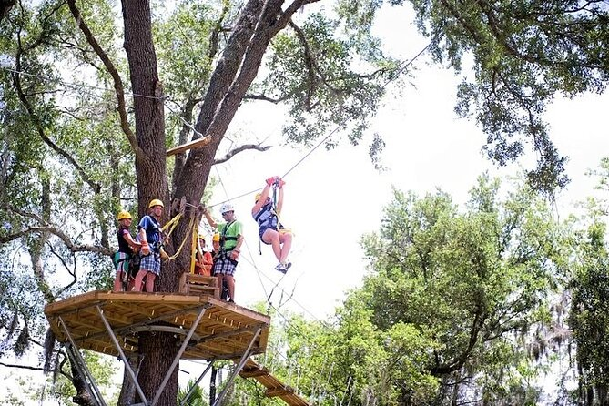 Treetop Express Zip Line Tour with 5 Zip Line Flights & 2 Sky Bridges Included