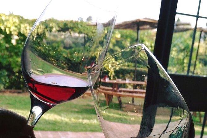 Afternoon Break in the Vineyard