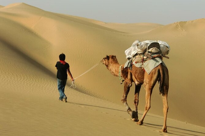 Half Day Sunset Safari With Camel Ride and Cultural Program