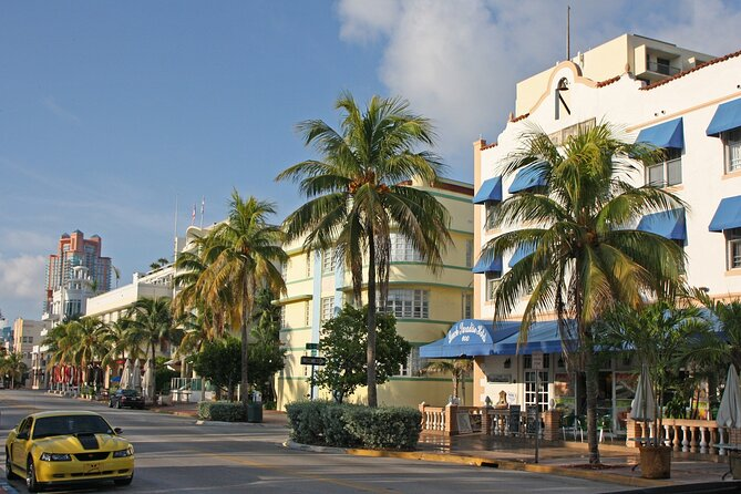 Miami City Half-Day Bus Tour with South Beach Cruise