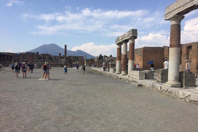 Naples Shore Excursion Mt Vesuvius and Pompeii Day Trip from Naples all inclusiv