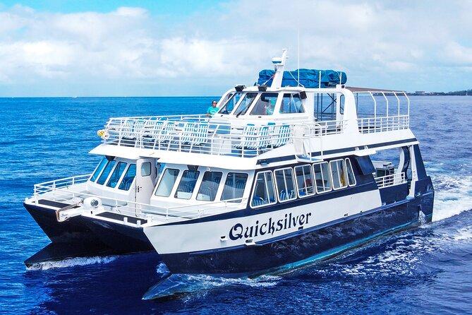 Lanai Snorkeling & Dolphin Encounter Aboard Quicksilver (MAUI / Lahaina Harbor)