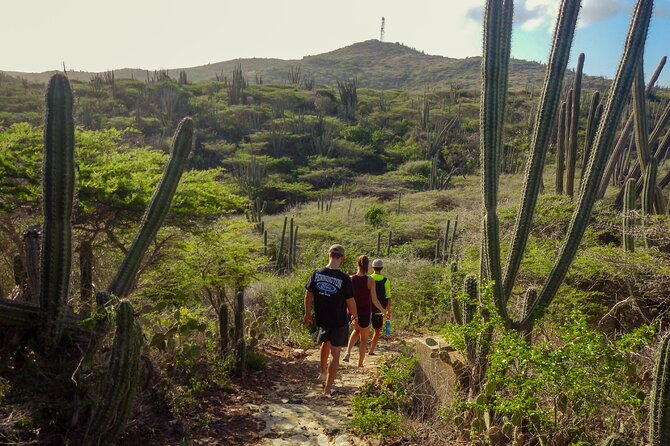 Hike with private guide to Aruba's highest point