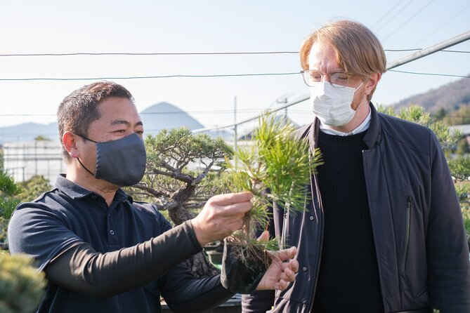Bonsai Experience with a Skilled Artisan at Japan's Top Producer