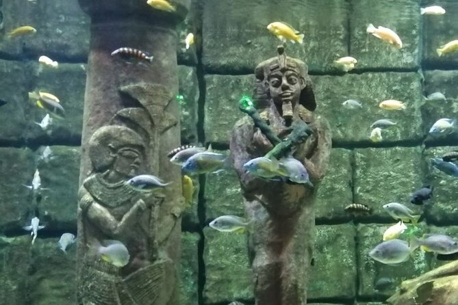 Antalya Tunnel Aquarium with Lunch and Düden Waterfall visit