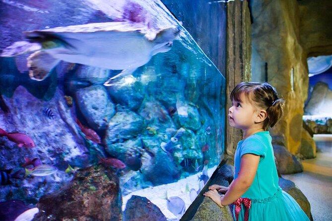 SEA LIFE® Aquarium Dallas