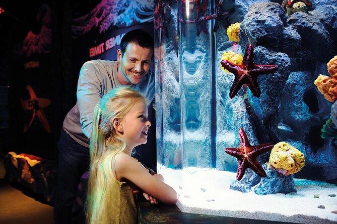 SEA LIFE® Aquarium Arizona