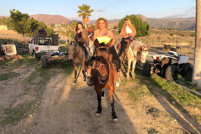 Horseback ride and new port lobster / Rosarito
