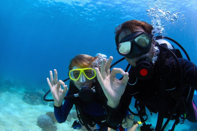 Diving Experience from the North of Menorca with Guide