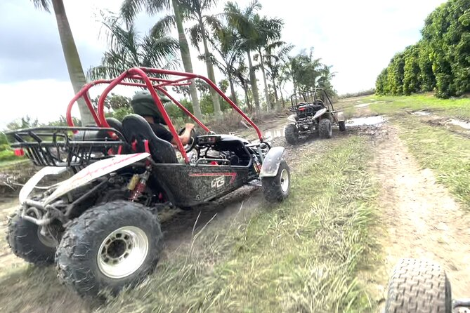 Miami Everglades Dune Buggy Ride