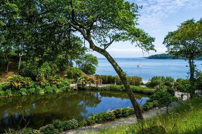 2-Hour Guided Tour of Cornish Garden with an Experienced Horticulturalist