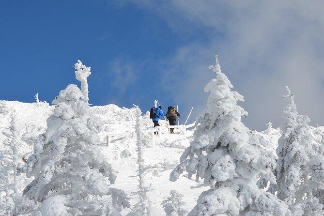 Small-Group Beginners Snow Trekking in Tsubo-Niwa