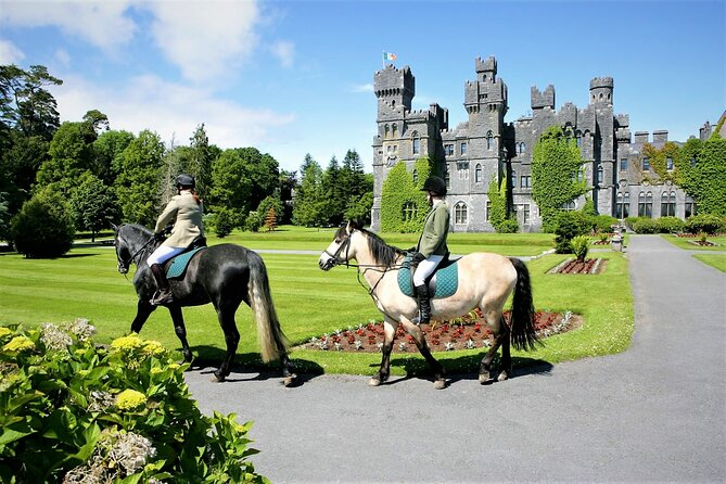Horse ride along shores and forests of Lough Corrib. Mayo. Private guided.