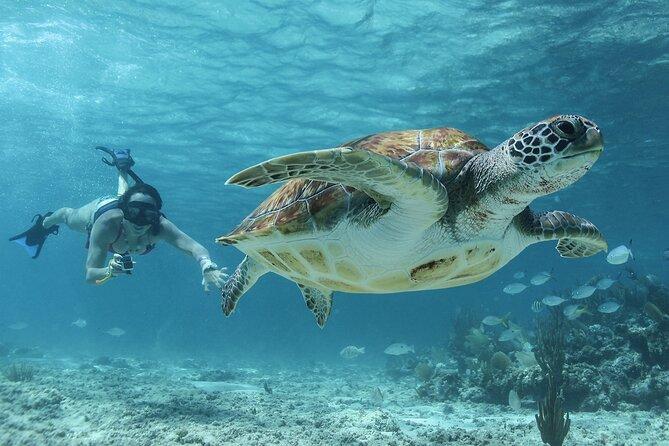 Akumal Cenote Swimming and Snorkeling from Cancun & Costa Mujeres