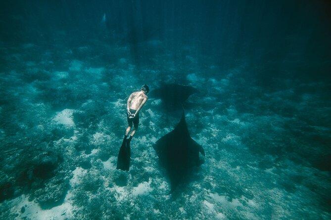 Snorkeling and Freediving Trip around Nusa Penida