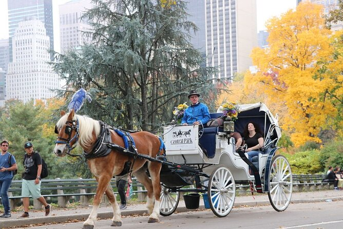 Private Relaxing Horse Carriage Ride in Central Park