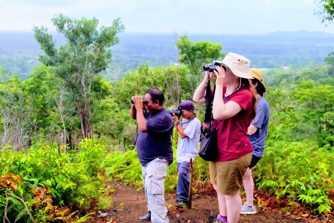 Scarlet Macaw Hiking Experience