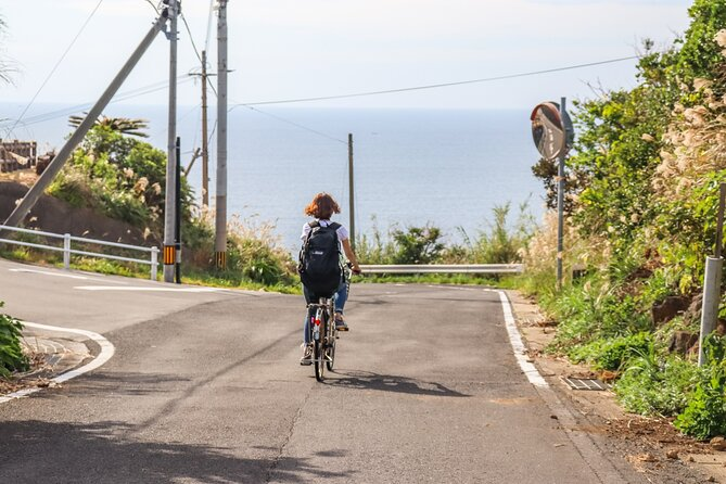 Takashima Half-Day Private Cycling Tour Exploring the Nature