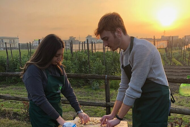 Private guided tour and cooking class in the countryside